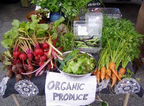 green-basics-organic-produce-stand.jpg?w
