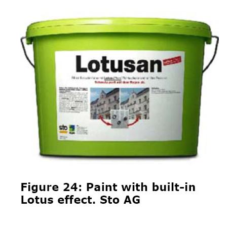 lotusan1.png?w=456&h=444