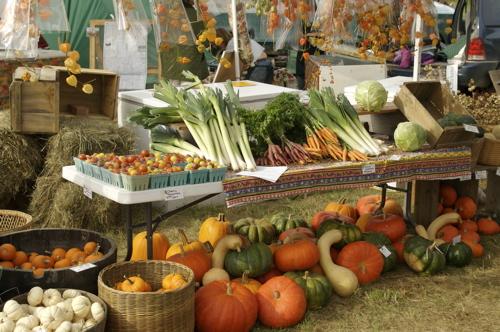 organic-produce.jpg?w=500&h=332