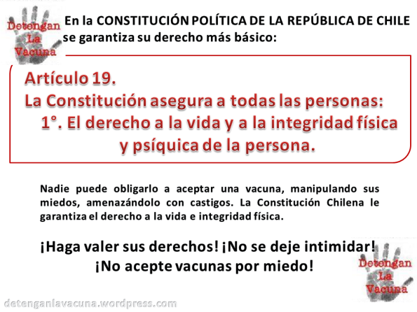 articulo19